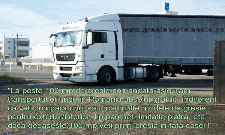 Transport Gratuit Gresie Portelanata
